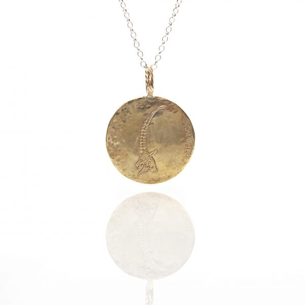 ibex coin necklace